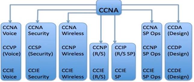 Ccnp认证费用是多少? - 1